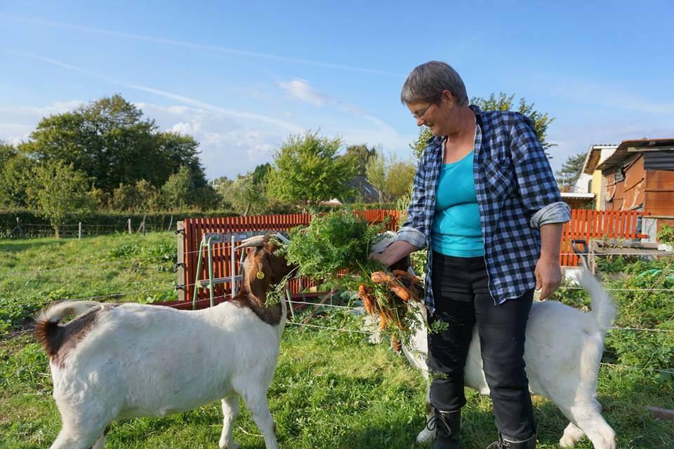 Maren fra Møllehuset med gederne